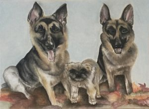 Ink and Byte - Custom Pet Portrait from your Photo, 2 or more pets. Hand Drawn on Cold-Pressed Watercolor Paper - Sophie, Jax & Gilly