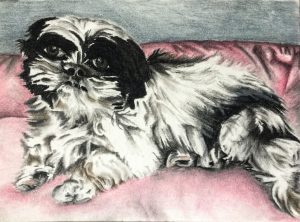 Ink and Byte - Custom Pet Portrait from your Photo, 2 or more pets. Hand Drawn on Cold-Pressed Watercolor Paper - Emmy
