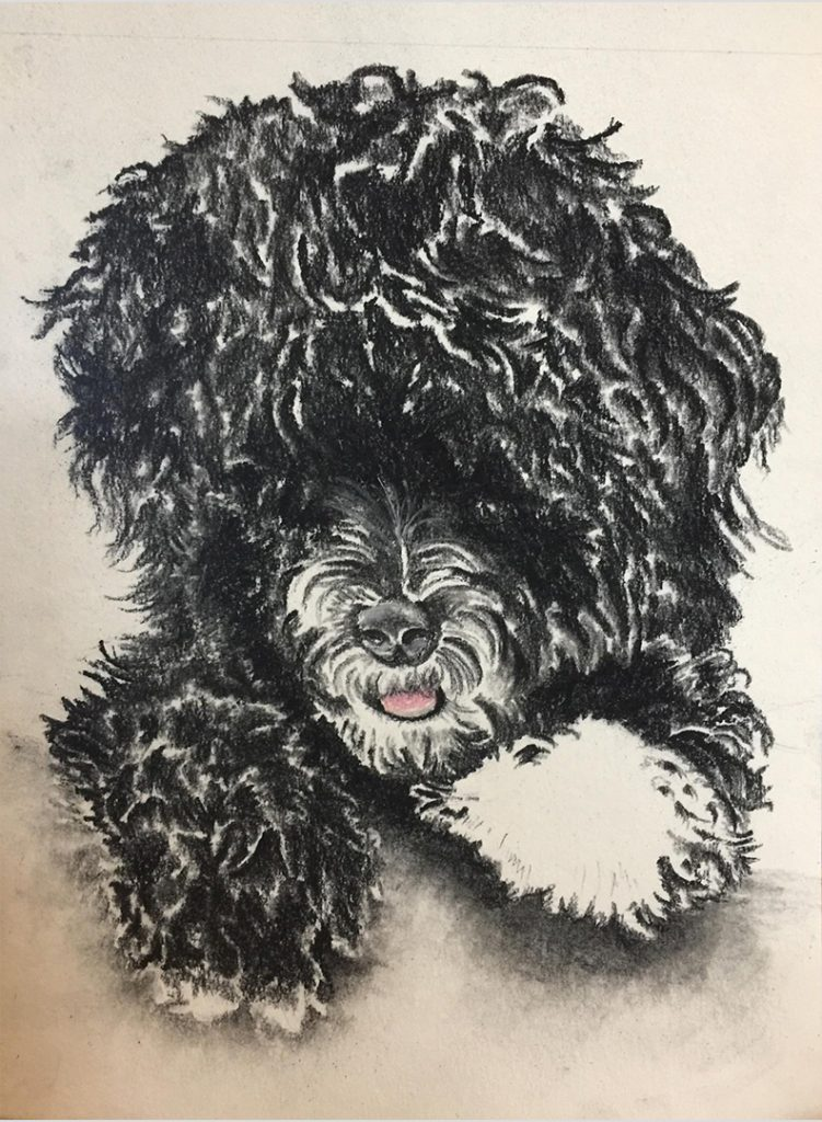 Ink and Byte - Custom Pet Portrait from your Photo, 2 or more pets. Hand Drawn on Cold-Pressed Watercolor Paper - Max